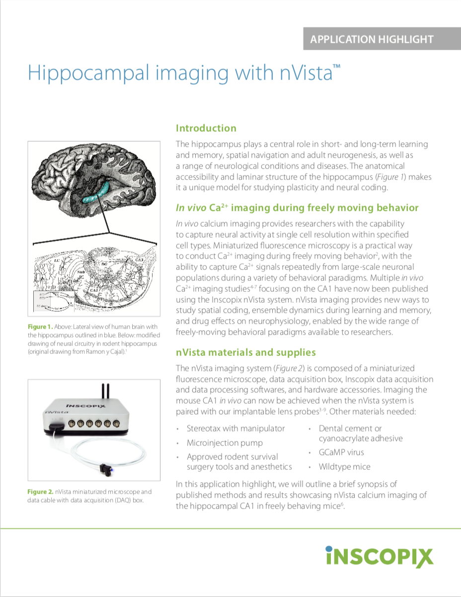 Hippocampal imaging with nVista.png
